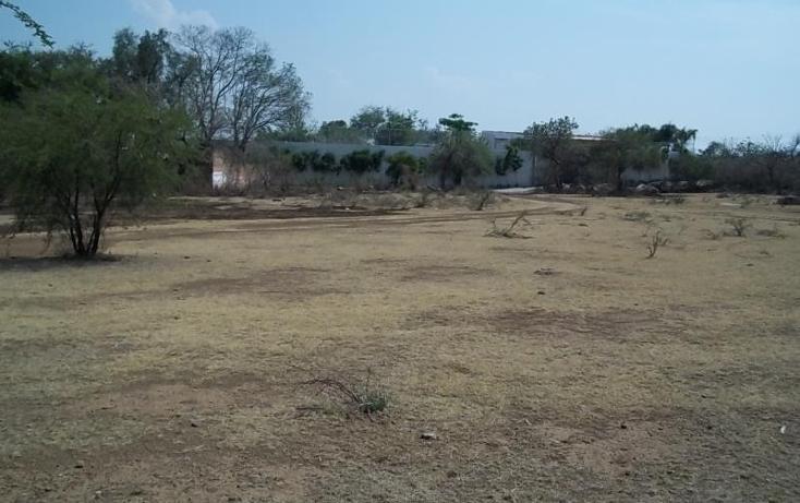 Foto de terreno habitacional en venta en  0, tepeojuma, tepeojuma, puebla, 1788278 No. 05