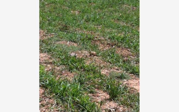 Foto de terreno comercial en venta en  0, tonatico, tonatico, méxico, 883555 No. 07