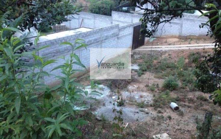 Foto de terreno comercial en venta en  0, villa guerrero, villa guerrero, m?xico, 1426599 No. 04