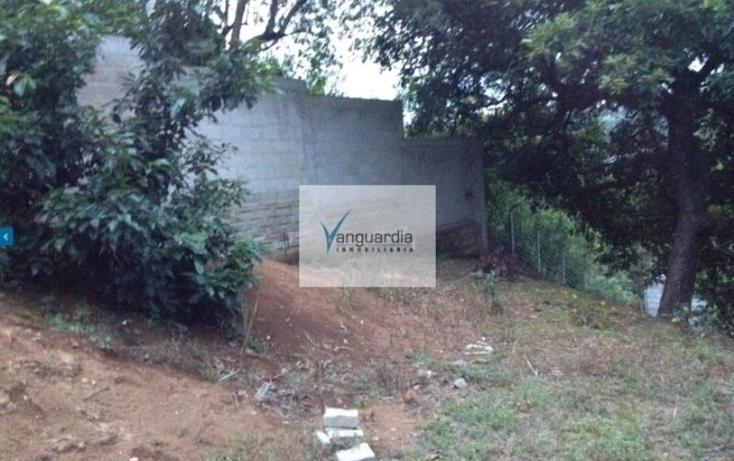 Foto de terreno comercial en venta en  0, villa guerrero, villa guerrero, m?xico, 1426599 No. 05