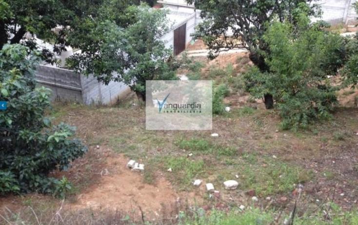 Foto de terreno comercial en venta en  0, villa guerrero, villa guerrero, m?xico, 1426599 No. 06