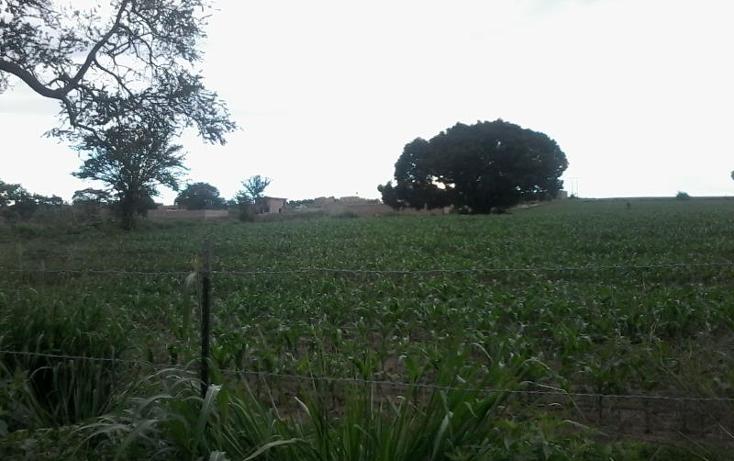 Foto de terreno comercial en venta en  00, el arenal, el arenal, jalisco, 996607 No. 02
