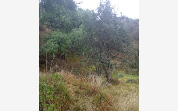 Foto de terreno habitacional en venta en  00, san esteban tizatlan, tlaxcala, tlaxcala, 1595508 No. 04