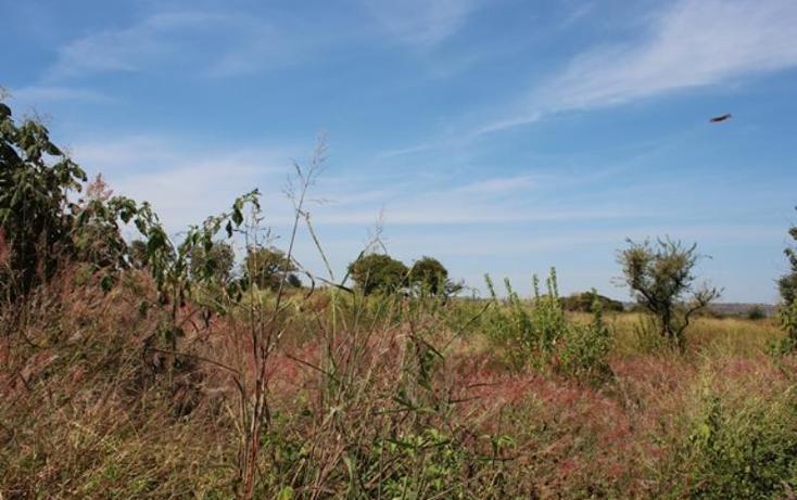 Foto de terreno habitacional en venta en carretera a zapotlaneja 000, el vado, tonalá, jalisco, 1442727 No. 02