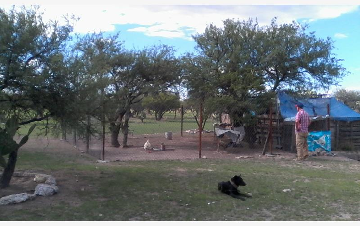 Foto de rancho en venta en  000, palo alto, el llano, aguascalientes, 2040648 No. 05
