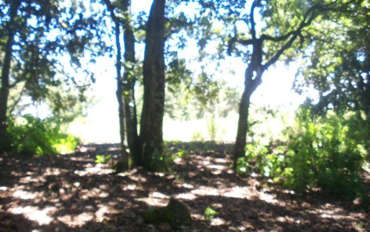 Foto de terreno habitacional en venta en  0000, loma de trojes, villa del carbón, méxico, 902797 No. 06