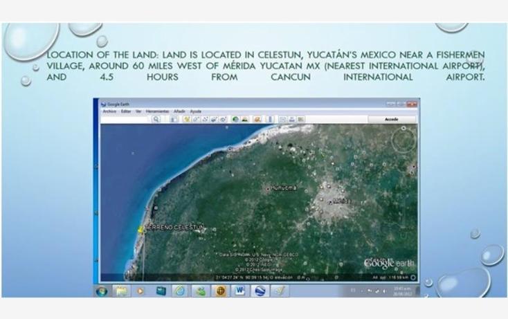 Foto de terreno habitacional en venta en 1 1, celestun, celestún, yucatán, 1424965 no 05