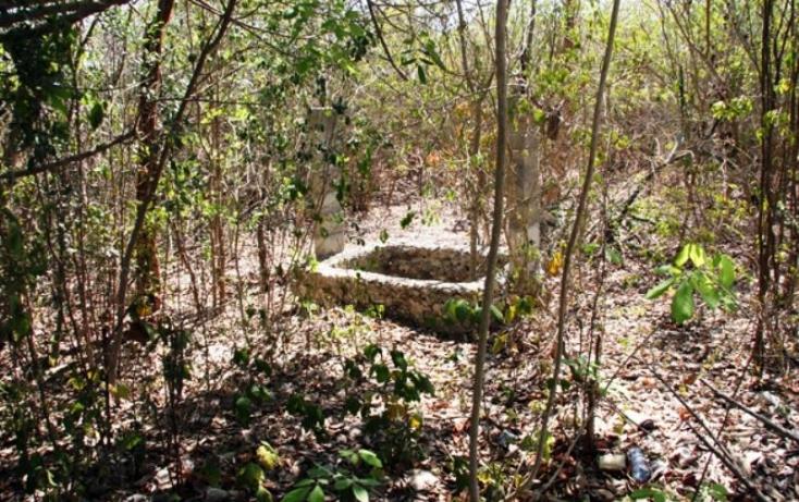Foto de terreno habitacional en venta en 1 1, cheuman, mérida, yucatán, 842899 no 03