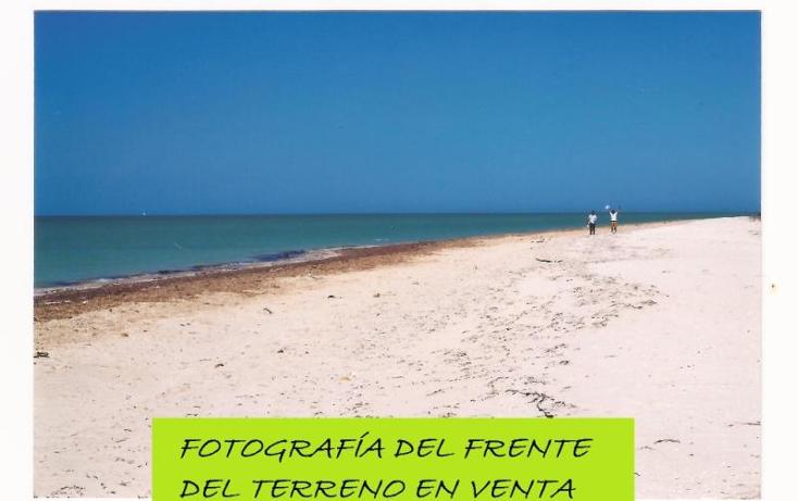 Foto de terreno comercial en venta en 1 1, el palmar, celestún, yucatán, 1936352 No. 07