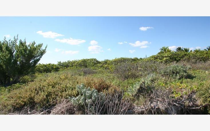 Foto de terreno habitacional en venta en 1 1, san crisanto, sinanché, yucatán, 1424837 no 02