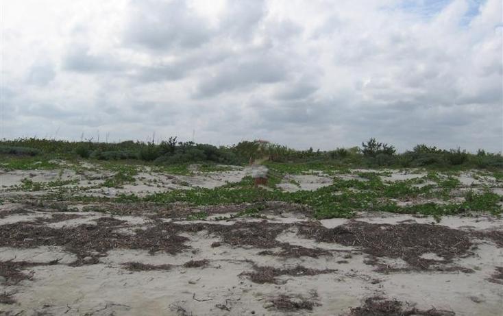 Foto de terreno habitacional en venta en 1 1, san crisanto, sinanché, yucatán, 1424837 no 03