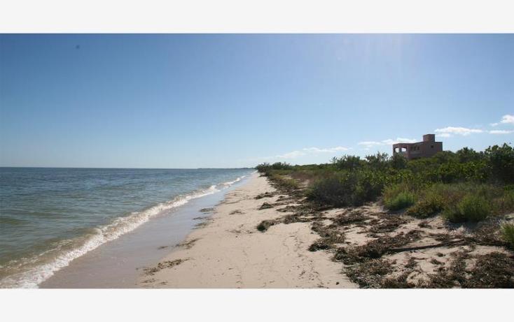 Foto de terreno habitacional en venta en 1 1, san crisanto, sinanch?, yucat?n, 1424837 No. 05