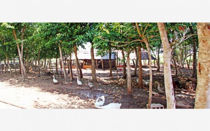 Foto de rancho en venta en 1 1, sucila, sucilá, yucatán, 840247 no 07
