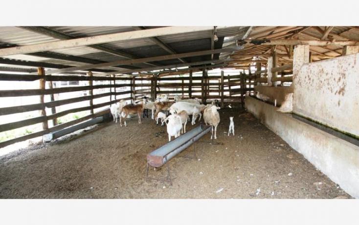 Foto de rancho en venta en 1 1, sucila, sucilá, yucatán, 840247 no 08