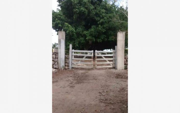 Foto de terreno industrial en venta en 1 1, tekanto, tekantó, yucatán, 1986698 no 08