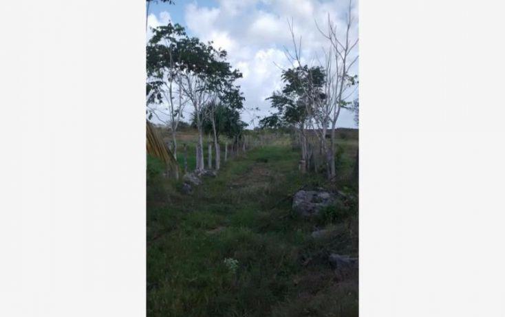 Foto de terreno industrial en venta en 1 1, tekanto, tekantó, yucatán, 1986698 no 17