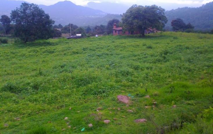 Foto de terreno habitacional en venta en  1, batan grande, donato guerra, méxico, 908647 No. 03