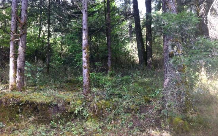 Foto de terreno habitacional en venta en  1, bosques de san cayetano, mineral del monte, hidalgo, 1925240 No. 01