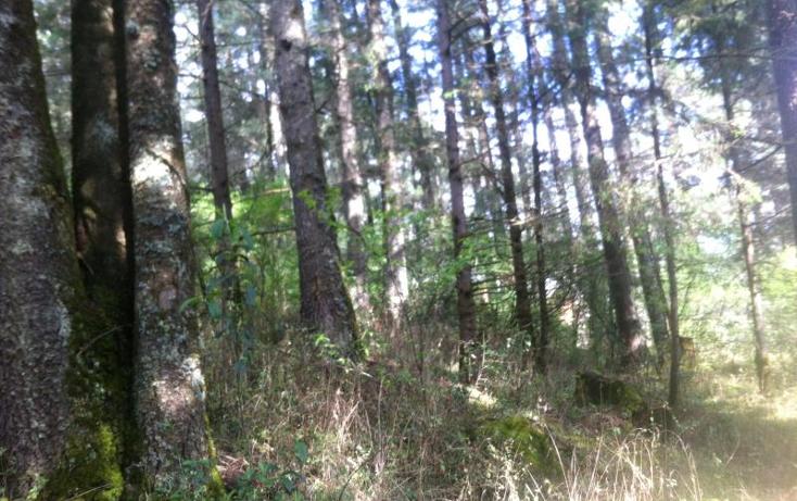 Foto de terreno habitacional en venta en  1, bosques de san cayetano, mineral del monte, hidalgo, 1925240 No. 03
