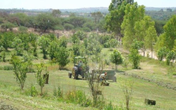 Foto de terreno habitacional en venta en  1, ciudad dolores hidalgo, dolores hidalgo cuna de la independencia nacional, guanajuato, 680317 No. 04