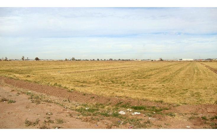 Foto de terreno comercial en renta en  , 1 de mayo, mexicali, baja california, 1192105 No. 01