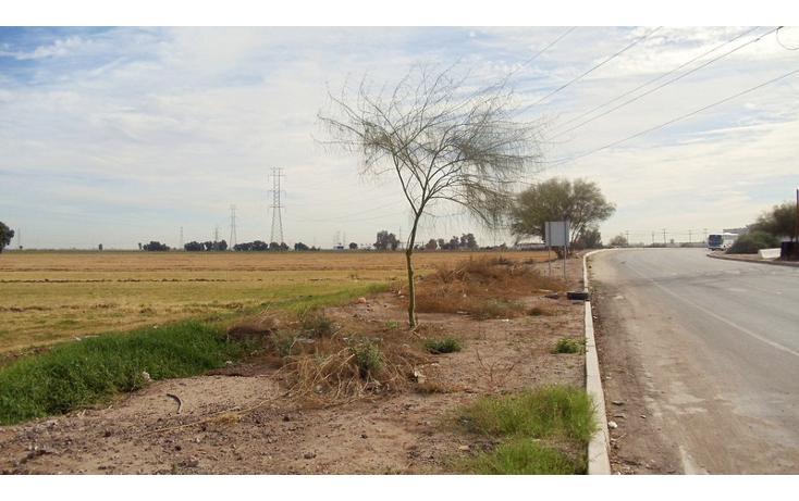 Foto de terreno comercial en renta en  , 1 de mayo, mexicali, baja california, 1192105 No. 03