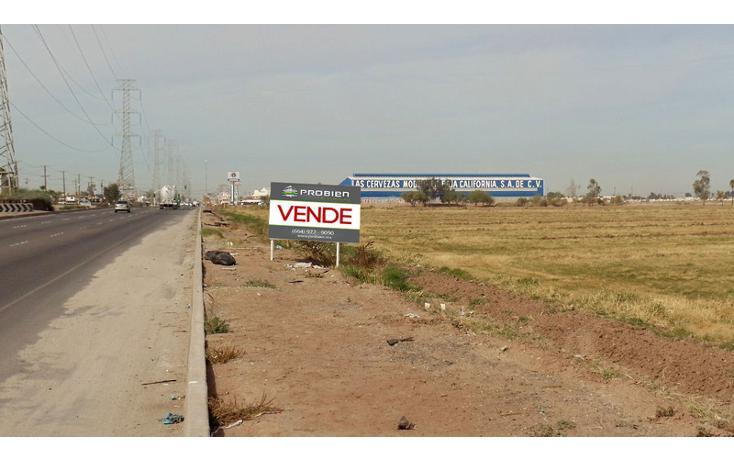 Foto de terreno comercial en renta en  , 1 de mayo, mexicali, baja california, 1192105 No. 04