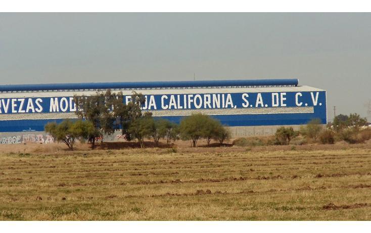 Foto de terreno comercial en renta en  , 1 de mayo, mexicali, baja california, 1192105 No. 05
