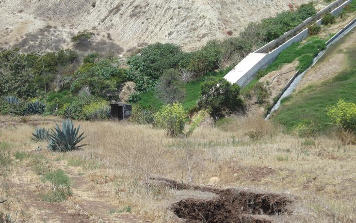 Foto de terreno comercial en venta en  , 1 de mayo, tecate, baja california, 1191875 No. 04