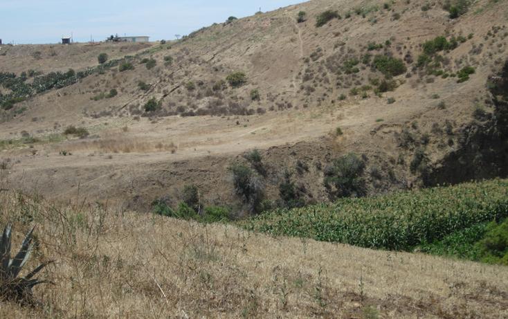 Foto de terreno comercial en venta en  , 1 de mayo, tecate, baja california, 1191875 No. 05