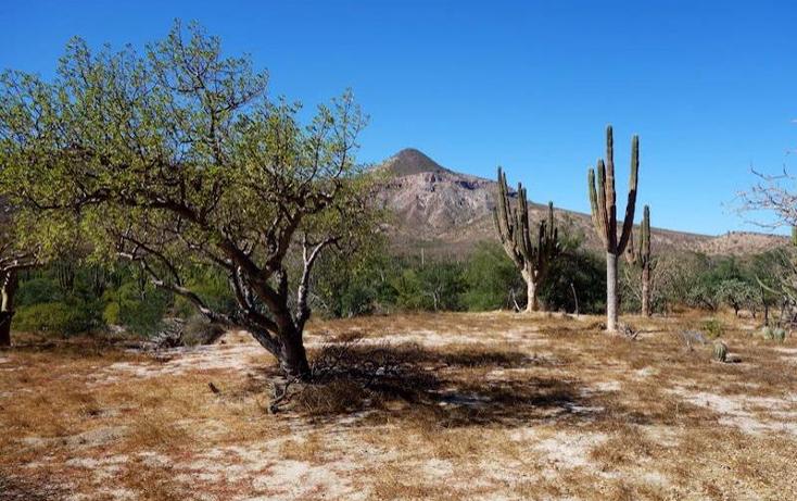 Foto de terreno comercial en venta en  1, el coyote, mulegé, baja california sur, 970267 No. 04