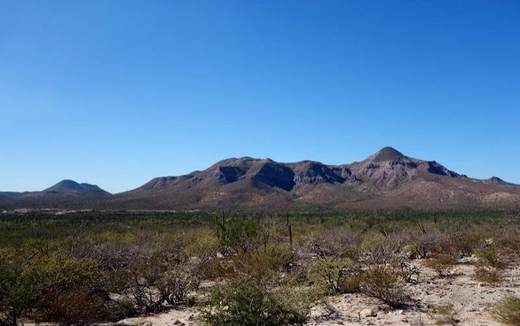 Foto de terreno comercial en venta en  1, el coyote, mulegé, baja california sur, 970267 No. 09