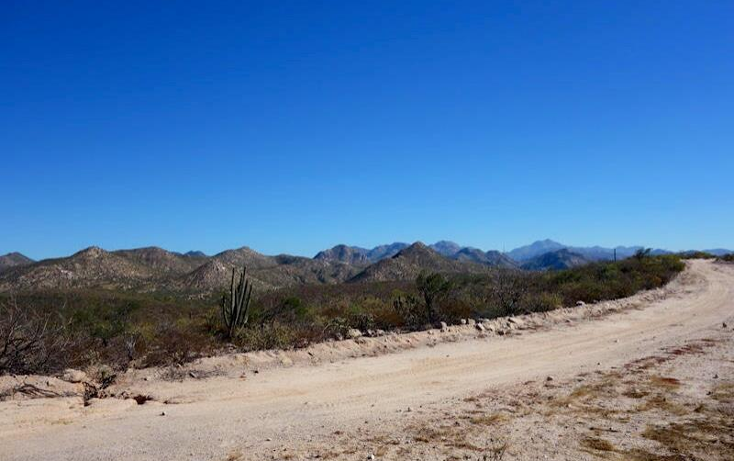 Foto de terreno comercial en venta en  1, el coyote, mulegé, baja california sur, 970267 No. 10
