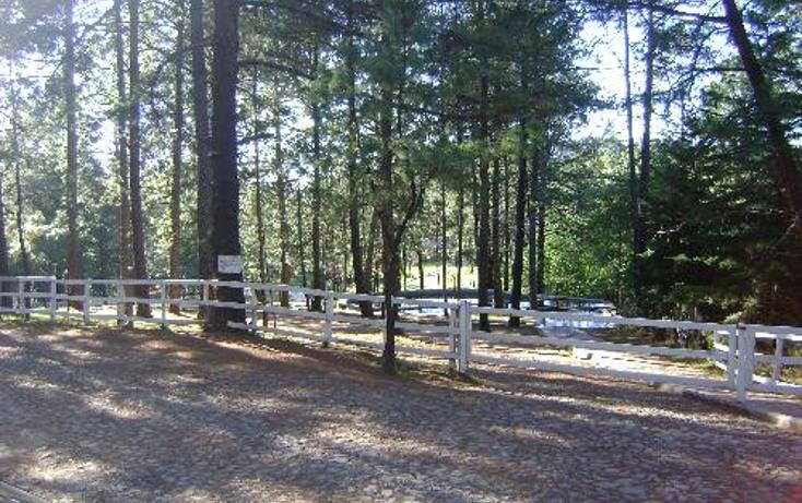 Foto de rancho en venta en  1, ferreria de tula, tapalpa, jalisco, 397763 No. 05