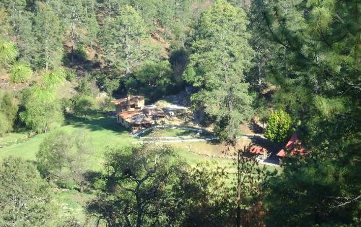 Foto de rancho en venta en  1, ferreria de tula, tapalpa, jalisco, 397763 No. 06