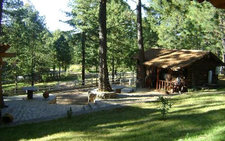 Foto de rancho en venta en  1, ferreria de tula, tapalpa, jalisco, 397763 No. 12