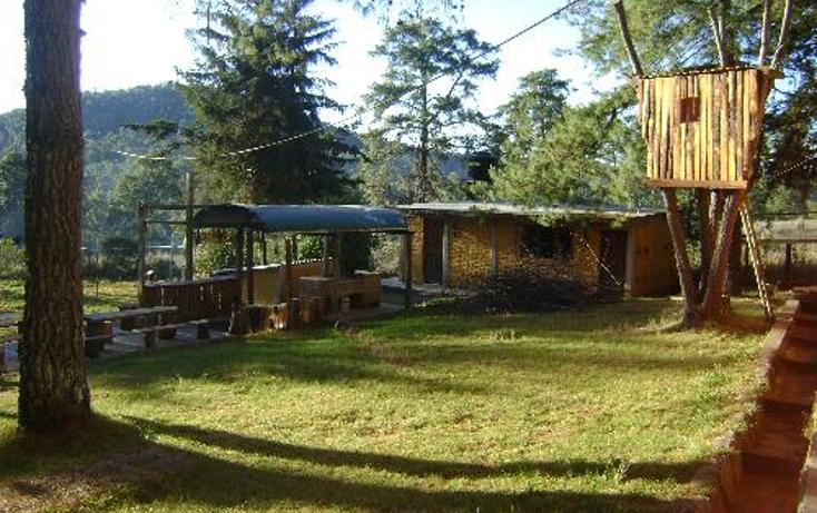 Foto de rancho en venta en  1, ferreria de tula, tapalpa, jalisco, 397763 No. 13