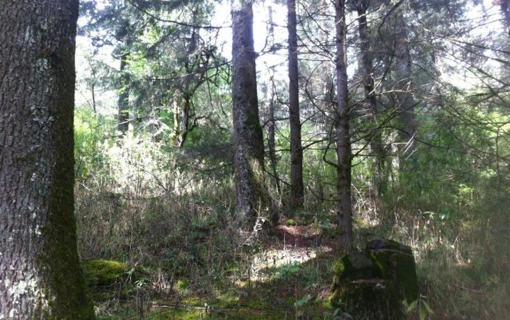 Foto de terreno habitacional en venta en  1, huasca de ocampo centro, huasca de ocampo, hidalgo, 1408687 No. 03
