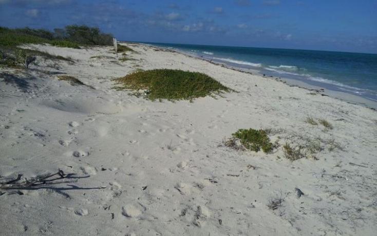 Foto de terreno comercial en venta en  1, isla blanca, isla mujeres, quintana roo, 1988144 No. 03