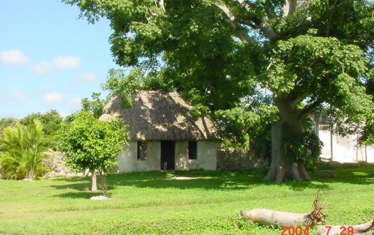 Foto de terreno habitacional en venta en  1, izamal, izamal, yucatán, 968897 No. 06
