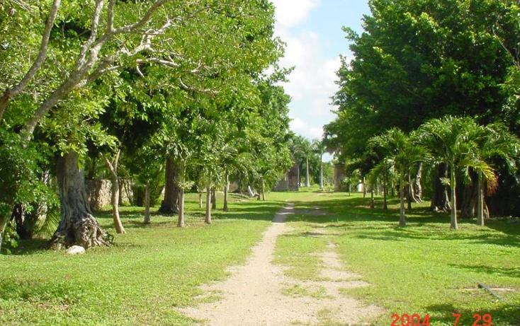 Foto de terreno habitacional en venta en  1, izamal, izamal, yucatán, 968897 No. 07