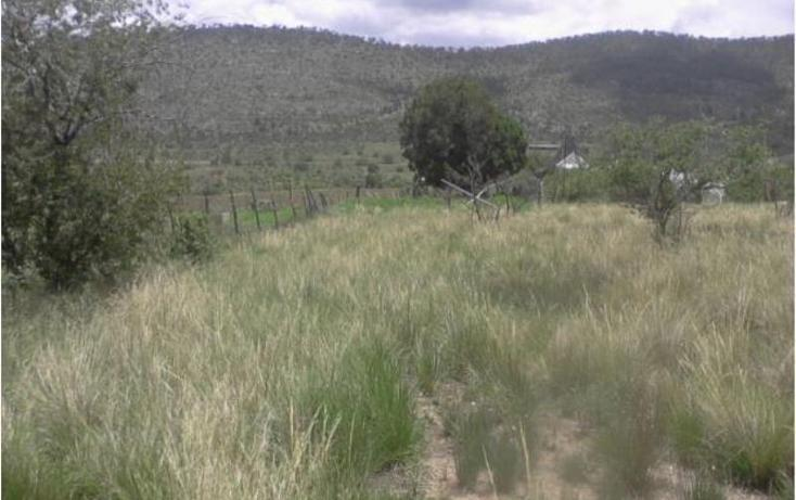 Foto de terreno habitacional en venta en  1, jame, arteaga, coahuila de zaragoza, 1610864 No. 08