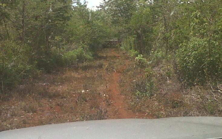 Foto de terreno habitacional en venta en 1 1, kantunil, kantunil, yucatán, 877125 No. 06