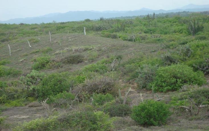 Foto de terreno comercial en venta en  1, la gloria, tomatlán, jalisco, 1649084 No. 14