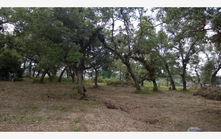 Foto de terreno comercial en venta en maloapan 1, maloapan i, martínez de la torre, veracruz de ignacio de la llave, 1628926 No. 03