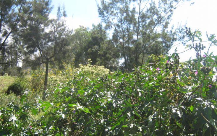 Foto de terreno habitacional en venta en 1 mayo 2 de abril, san miguel teotongo sección mercedes, iztapalapa, df, 350493 no 04