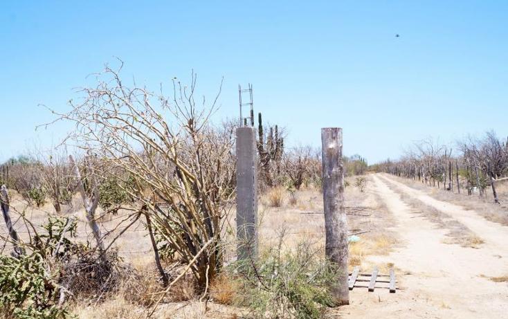 Foto de terreno habitacional en venta en  1, olas altas, la paz, baja california sur, 1006231 No. 07