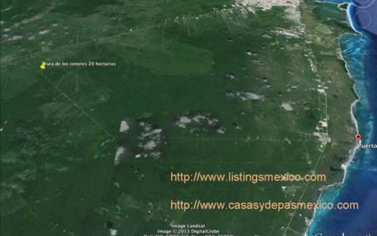 Foto de terreno comercial en venta en  1, puerto morelos, benito ju?rez, quintana roo, 378118 No. 05