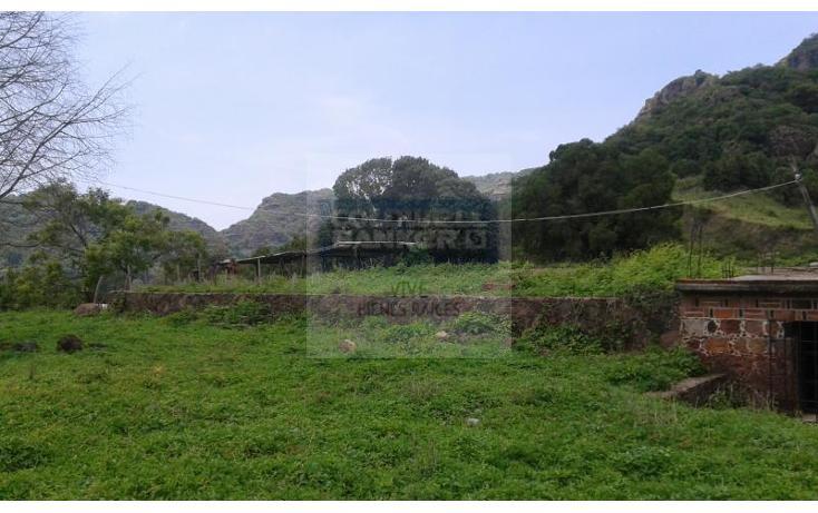 Foto de terreno habitacional en venta en  1, san josé, tepoztlán, morelos, 1028979 No. 03