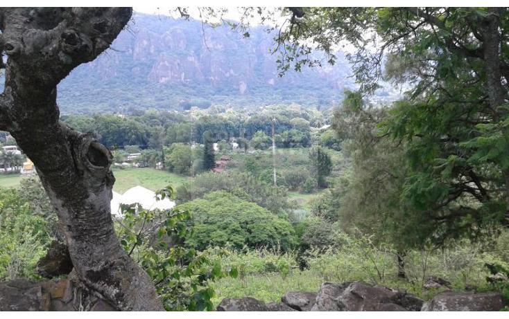 Foto de terreno habitacional en venta en  1, san josé, tepoztlán, morelos, 1028979 No. 06